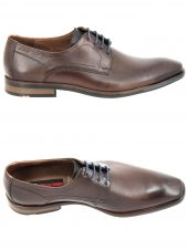 derbies lloyd don marron